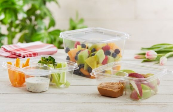 Development of Food Packaging Industry